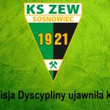 Komisja Dyscypliny ujawniła kary dla ZEW-u!